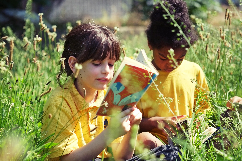 Pupils reading in the school meadow